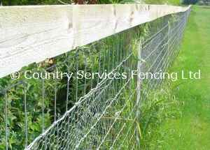 Post and wire netting